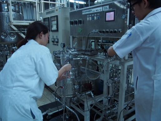 Technology platform establishment in lactic acid fermentation for the bioplastic industry
