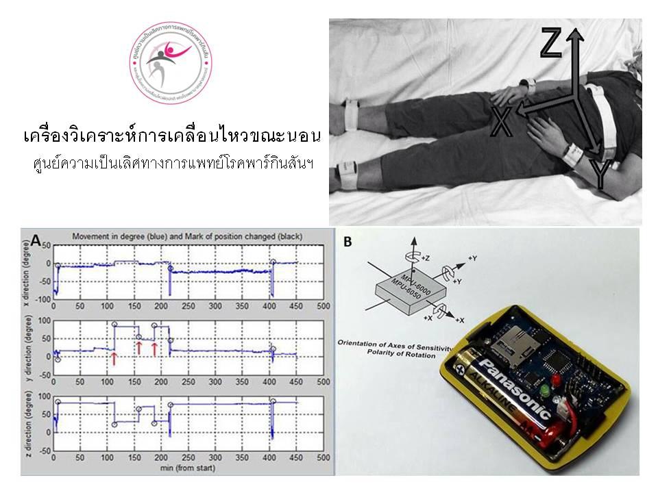 Sleep motion analyzer
