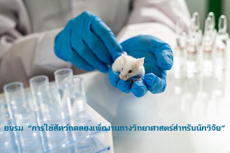 """อบรม """"การใช้สัตว์ทดลอง เพื่องานทางวิทยาศาสตร์ สำหรับนักวิจัย"""""""