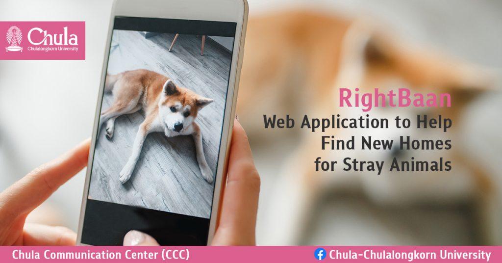 Chula Veterinary Students Developed