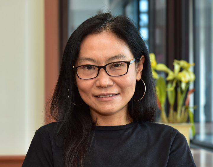 Professor Dr. Khanitha Pudhom, Department of Chemistry, Chulalongkorn University