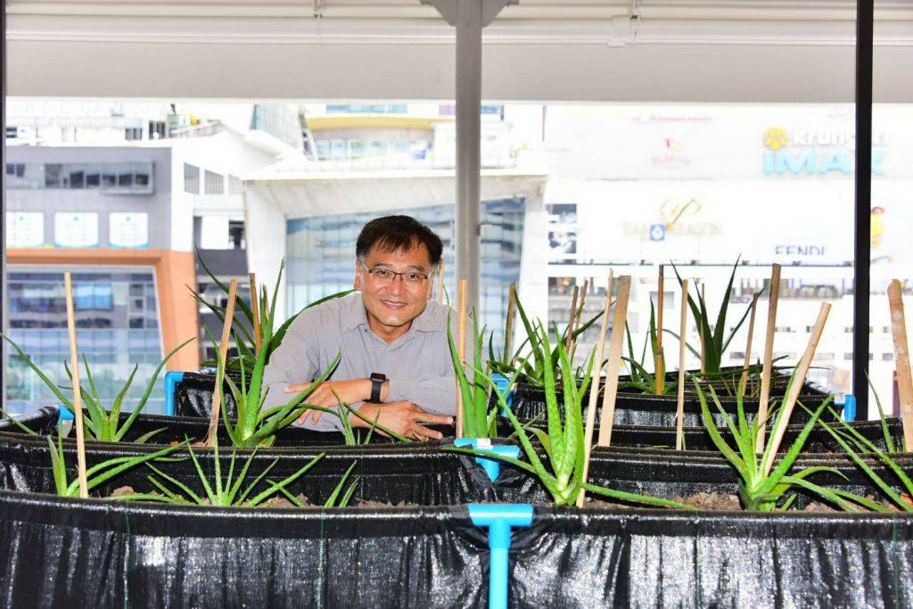 Prof. Pasutha Thunyakitpisal, DDS, Department of Anatomy, Faculty of Dentistry and a post-graduate program in Dental Biomaterials Science, Chulalongkorn University