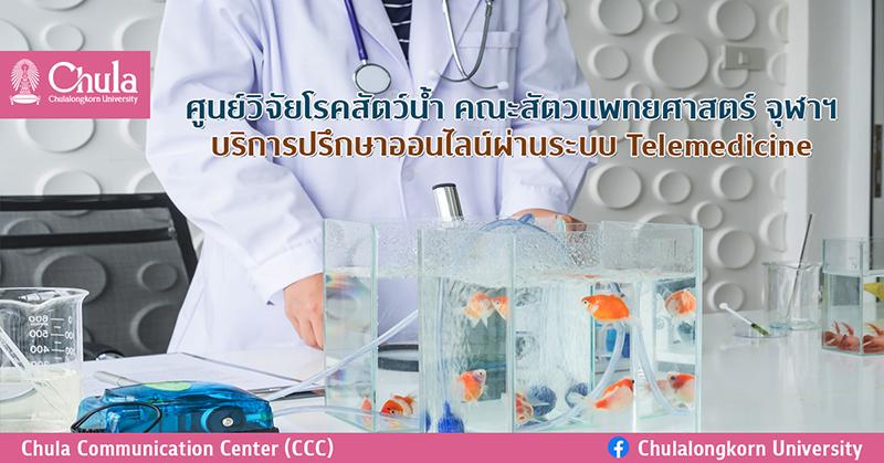 ศูนย์วิจัยโรคสัตว์น้ำ คณะสัตวแพทยศาสตร์ จุฬาฯ บริการปรึกษาออนไลน์ผ่านระบบ Telemedicine