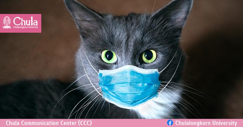 สัตว์เลี้ยงกับสถานการณ์การระบาดโควิด-19