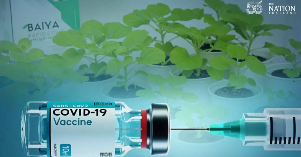 Thai-Made Baiya Vaccine Enters 1st Human Trial This Month