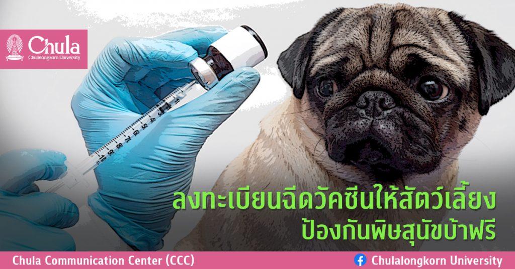 ลงทะเบียนฉีดวัคซีนให้สัตว์เลี้ยง ป้องกันพิษสุนัขบ้าฟรี